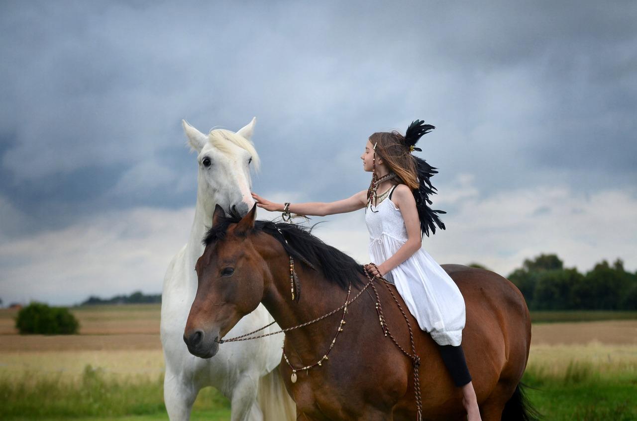 Wie man Pferde pflegt